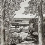 Swarm Vista, india ink on paper, 60 x 46 in.